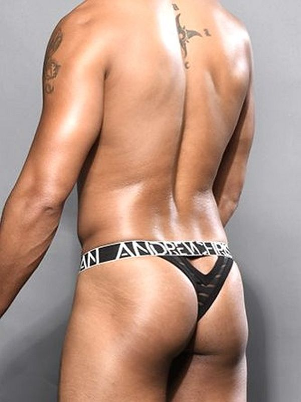 Andrew Christian Blow Mesh Brief 90411